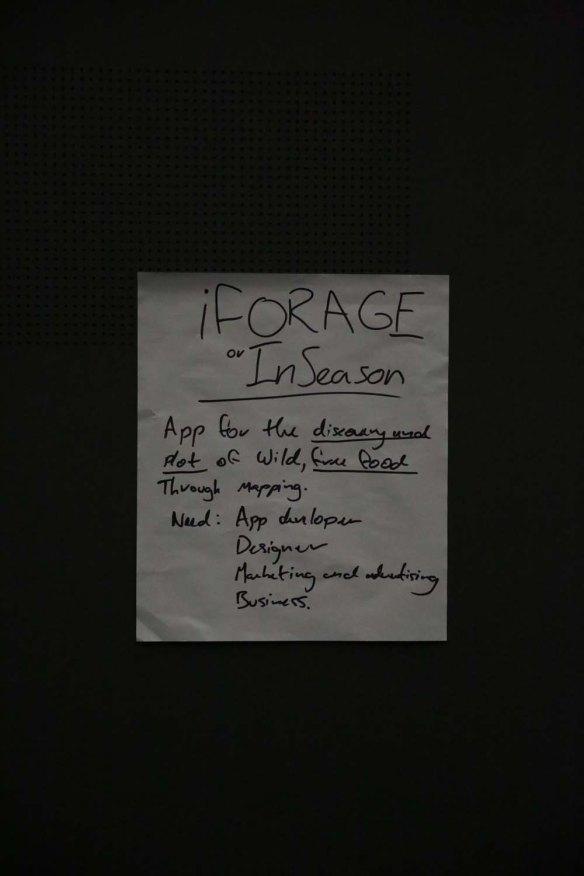 iForage concept poster. I received 19 votes to go through to form a team.